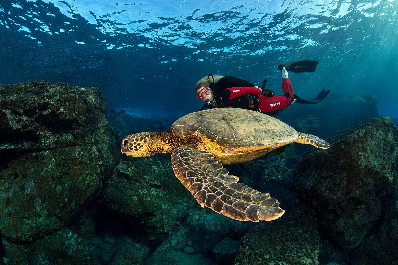 Hawaii - Schildkröte mit Taucherin Iris Thiele-Schmied