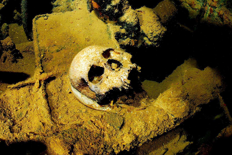 Truk Lagoon - Totenschädel im Wrack